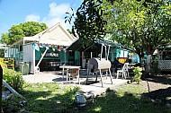 Tropical Fruit Tree café